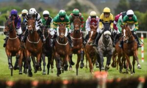 Horse Racing Straight Bets