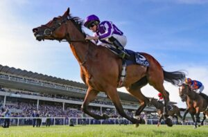 Online Horse Racing Straight Bets